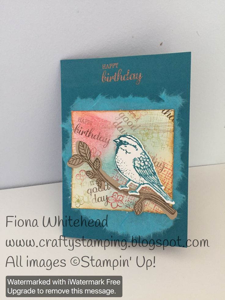 Stampin Up Best Birds clear embossed www.craftystamping.blogspot.com