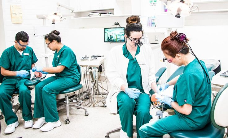 Dental Hygiene – Dental Programs – Pasadena City College #dental #office http://dental.remmont.com/dental-hygiene-dental-programs-pasadena-city-college-dental-office/  #hygienist # The Dental Hygiene Program Our Dental Hygiene Associate in Science (AS) degree program is a two-year program that prepares you to work as a dental hygienist. You will study the biological basis of the health of the teeth and oral cavity, as well as procedures used to prevent decay and to maintain dental […]