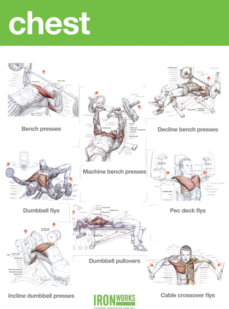 good chest workouts