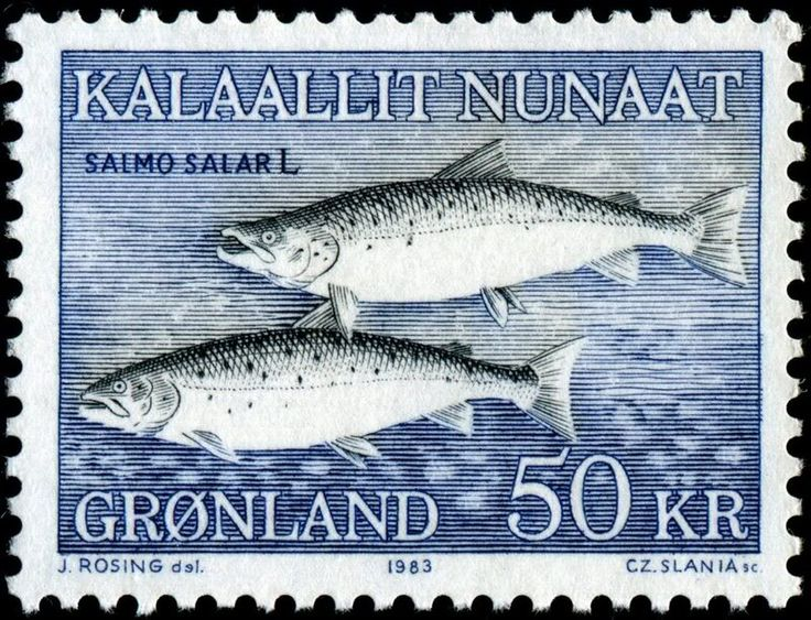 Salmon stamp from Greenland