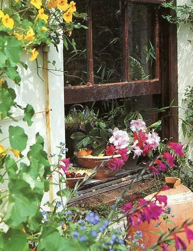 1000 Images About Rustic Old Windows On Pinterest