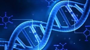 Our friends seem to be genetically more similar to us than strangers, according to a new U.S. scientific study led by prominent Greek-American professor of sociology and medicine at Yale University Nicholas Christakis and James Fowler, professor of medical genetics and political science at the University of California.