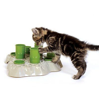 Best Wet Cat Food For Finicky Cats