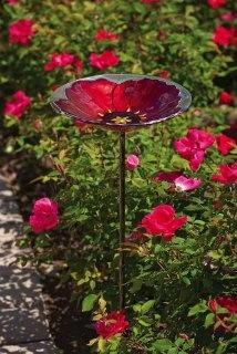 Bird bath... I LOVE this in red poppy, glass (just stunning)