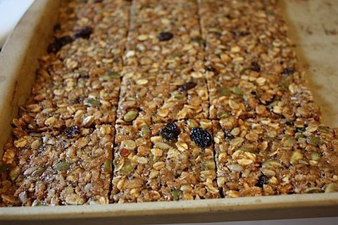 Chewy Oat Squares - Eating Bird Food