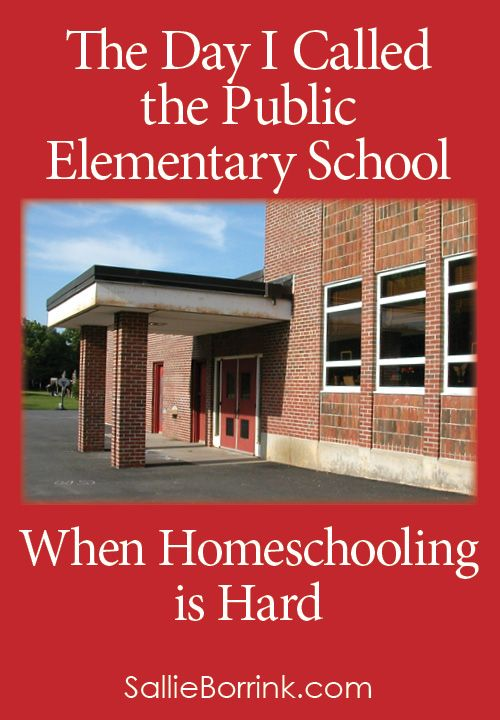 Have you ever wavered in your commitment to homeschooling? I have. Homeschooling is hard, especially if you have a differently-wired learner. Here is what I realized when I made the call...