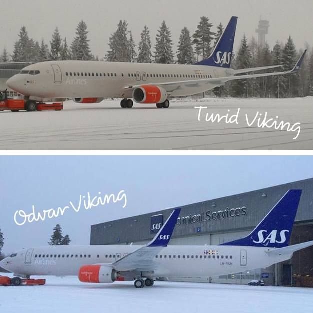 New Vikings!