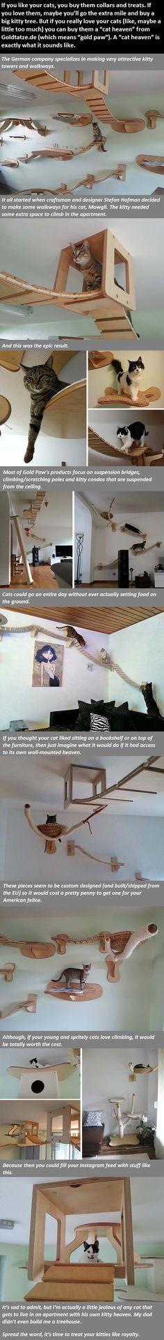 Vous pouvez faire vous-même cette Installation d'arbre à chats. Indispensable pour les chats d'appartement dont des études concordantes démontrent qu'un CHAT SOLITAIRE en APPARTEMENT a tendance à DEPRIMER et GROSSIR.