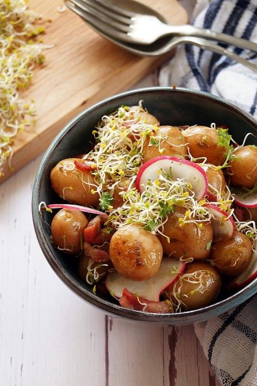Újburgonyasaláta brokkolicsírával recept