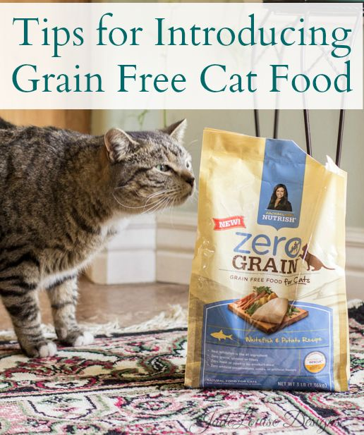 Tips for introducing Grain free cat food to your furry cats! #NutrishZeroGrain #sponsored