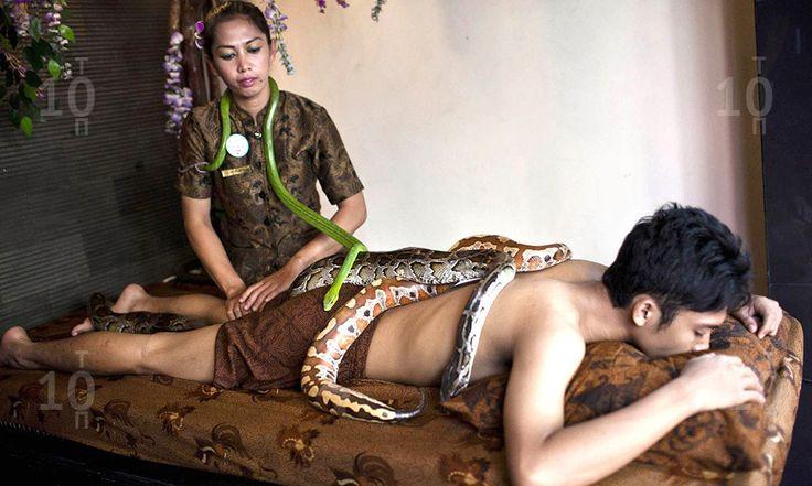 Самые экзотические СПА процедуры 4 место Змеиный массаж The most exotic spa treatments 4th place Snake massage