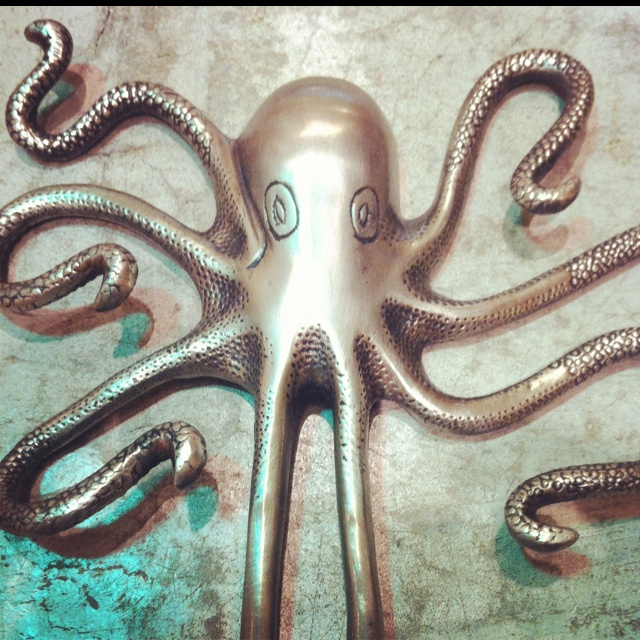 Octopus hook from anthropologie. Excellent for a pool bath.