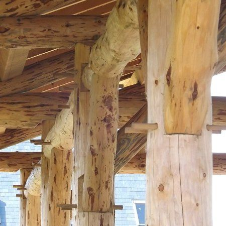 Sea Wyf – Ceredigion. Roundwood timber frame  for a self build project. From Ty Pren, a worker's cooperative in the U.K.   http://typren.co.uk/gallery-roundwood-timber-frame-projects/?utm_content=buffer39592&utm_medium=social&utm_source=pinterest.com&utm_campaign=buffer