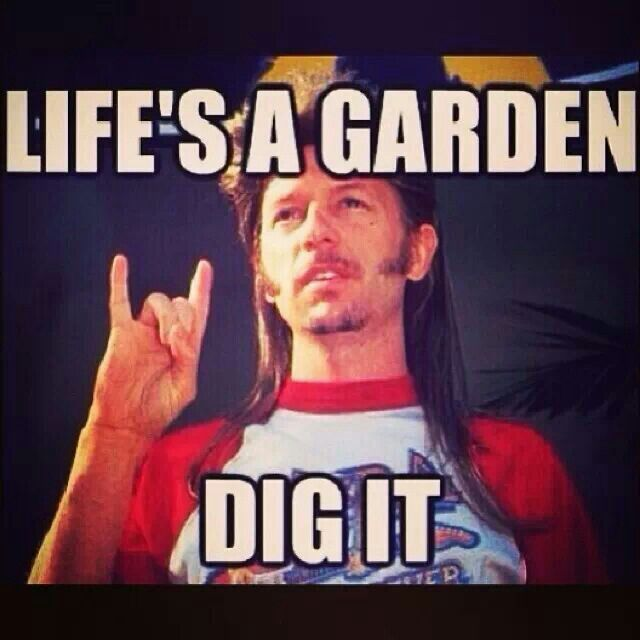 Love Joe Dirt!