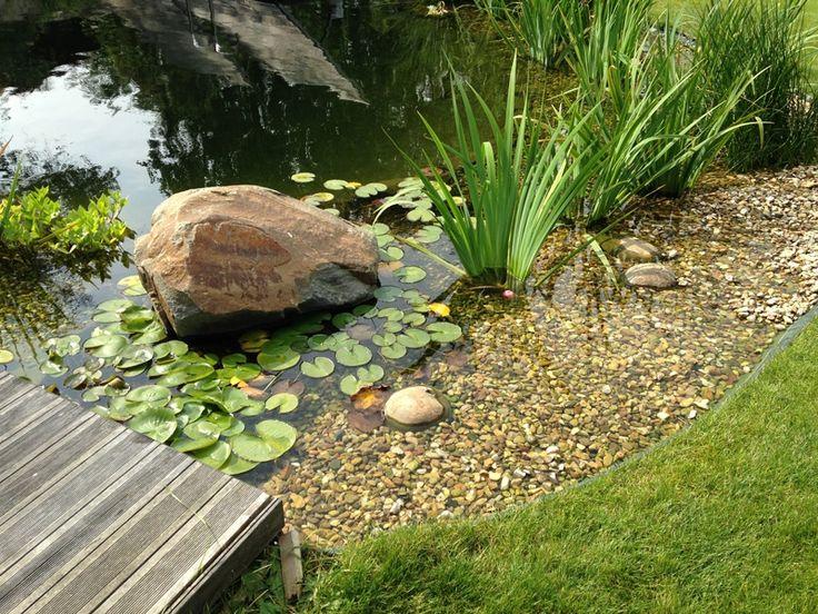 Naše zahradní jezírka — Fotogalerie — Zahradní jezírka SMALL LAKE
