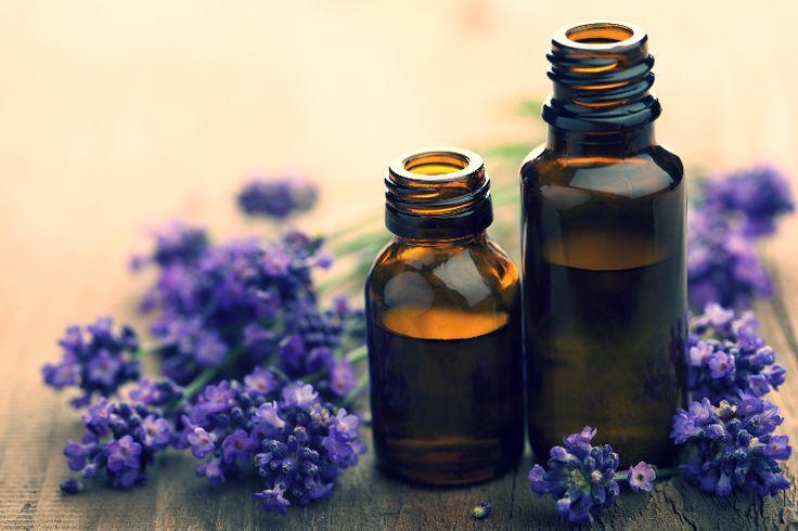 Viele kennen #Lavendel nur als wohltuenden Badezusatz oder als Mittel gegen Motten im Kleiderschrank. Aber die #Heilpflanze kann noch mehr: sie wirkt krampflösend, ist antimikrobiell, fördert das Einschlafen und hilft bei Verdauungsbeschwerden. Was Lavendel noch alles kann könnt ihr hier nachlesen: Klickt einfach auf das Bild :-)