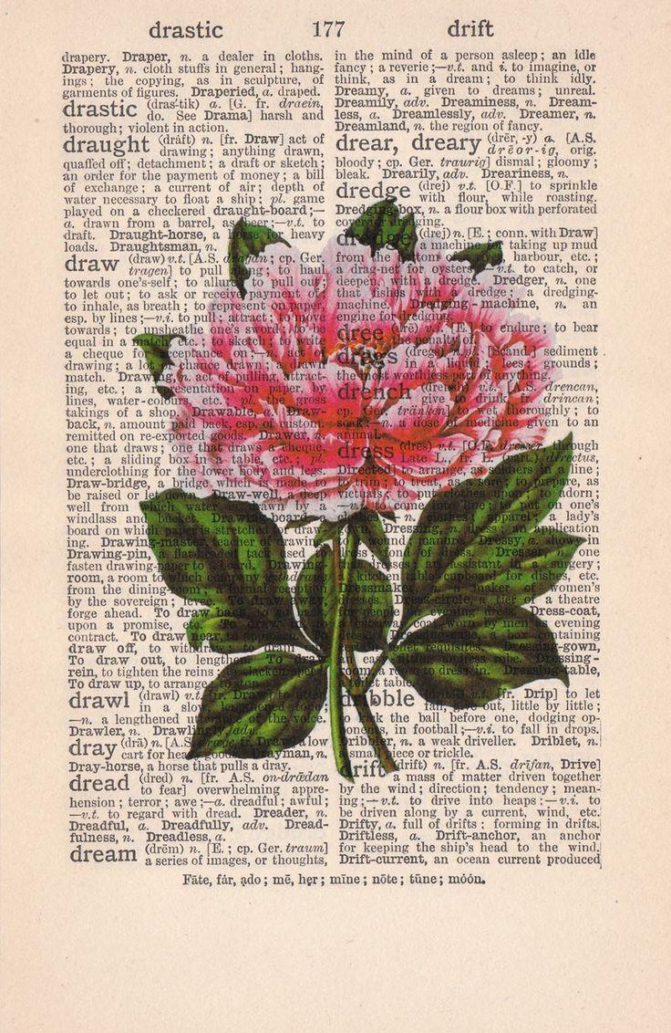 Vintage Book Print Dictionary or Encyclopedia Page Print- Book print Peony flower on Vintage Book art.