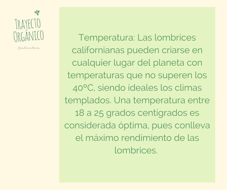 Temperatura ideal para las lombrices rojas californianas Eisenia Fetida