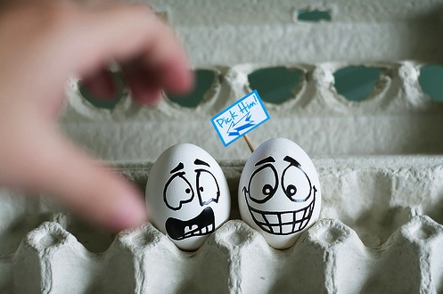 #eggFunny Pictures, Funny Eggs, Boiled Eggs, Funny Stuff, Food Photography, Funny Photos, Easter Eggs, Eggs Art, Food Art