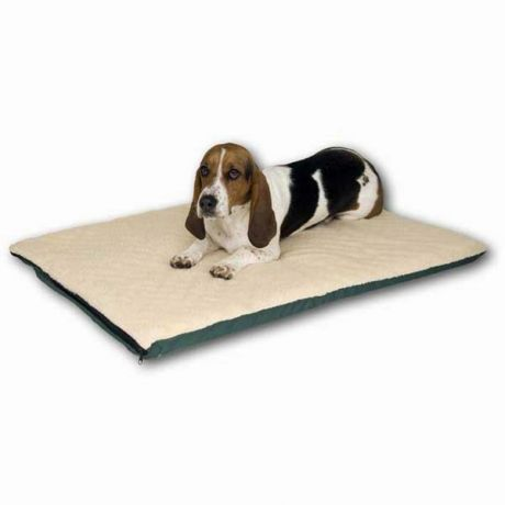 dog bed on best favorite beds heated that picks stop our sleeping