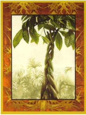 60x44 FICUS TREE Tropical Jungle Tapestry Wall Hanging $475