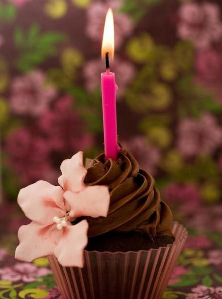 Happy Birthday Cupcake                                                                                                                                                     Mehr