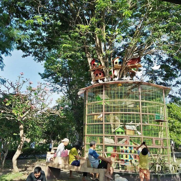 Pilih dalam sangkar atau rumah pohon?  #tamankotadenpasar