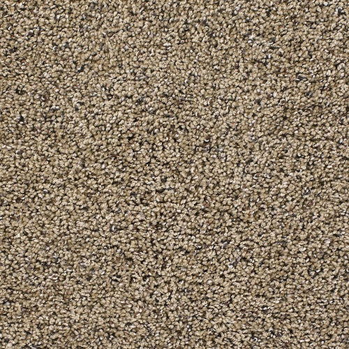 Images About Carpets On Pinterest Shaw Carpet Cloud 9 And Promotion