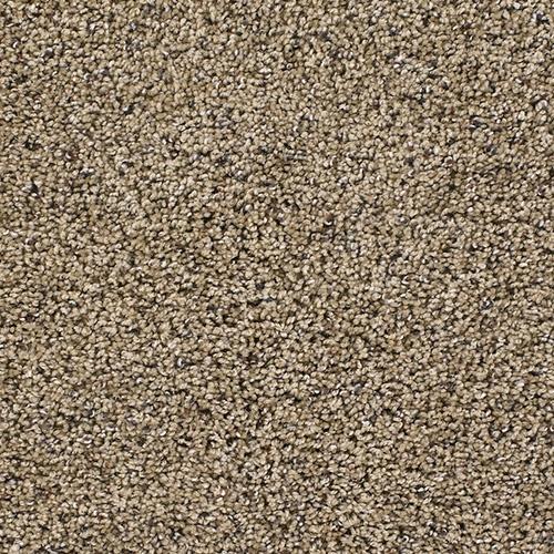 17 Best Images About Carpets On Pinterest Shaw Carpet