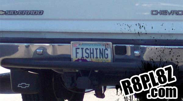 17 best images about fishy license plates on pinterest for Az fishing license
