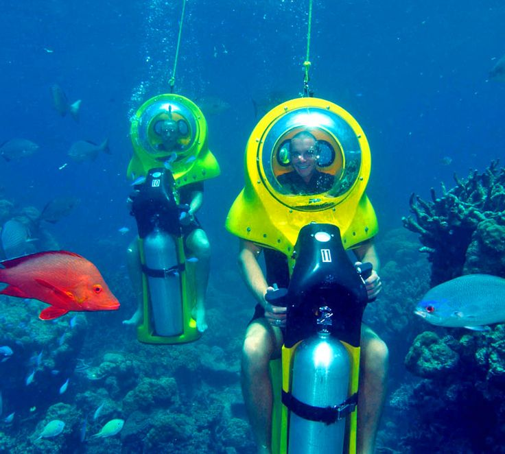 There are scooters for the sidewalk, scooters for the road, even scooters that people ride in stores, so why not one for underwater? This Scuba-Doo Underwater Rideable Scooter makes scuba diving more ...