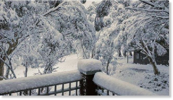 It's puking snow in the NSW High Country, with the big ski resorts waking to a winter wonderland this morning. And it's only Autumn. Up to 20cm of snow in the Snowy Mountains overnight heralded Sydney's first wintry blast for 2017: temperatures...