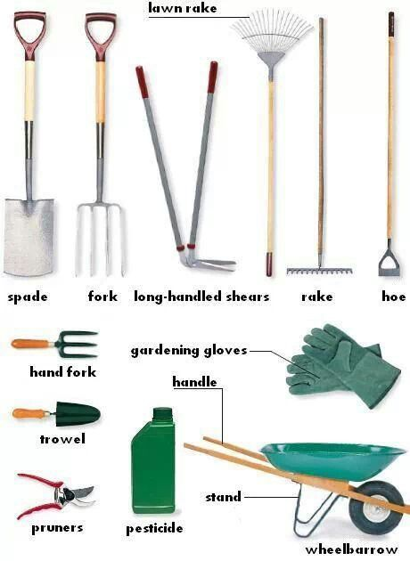 Gardening tools the outdoors vocabulary pinterest for Common garden hand tools