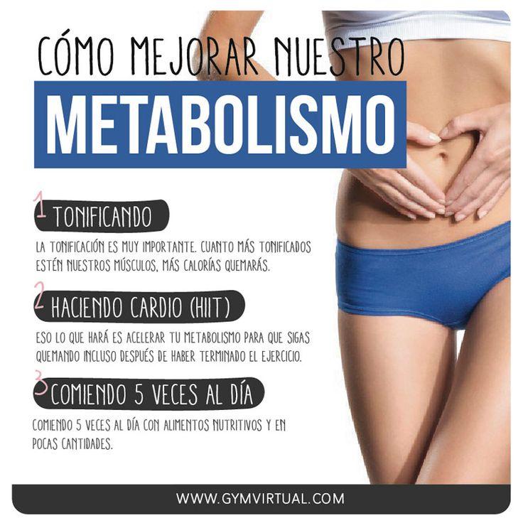 metabolismo_web