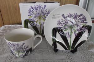 Fine bone English china breakfast cup & saucer agapanthus design.