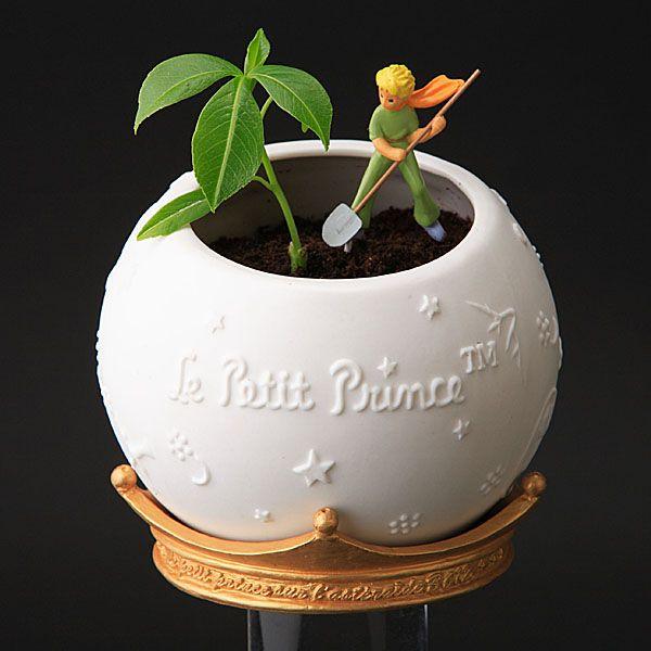 Citaten Uit Le Petit Prince : Beste ideeën over de kleine prins op pinterest