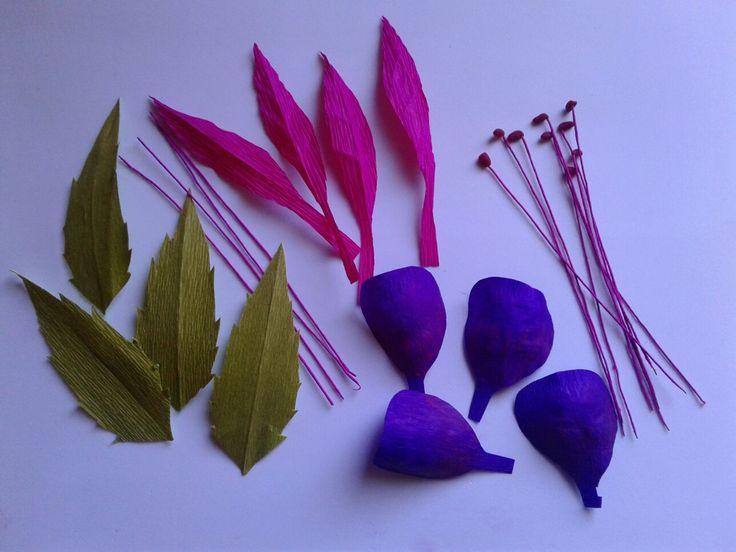 Órganos florales del Chilco
