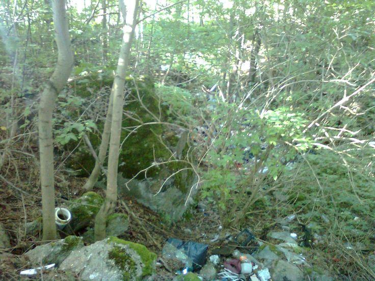 Dół po sporym bunkrze zaraz za Staświnami po prawej stronie w lesie. Widok na częsty wewnątrz bunkra - śmietnik.