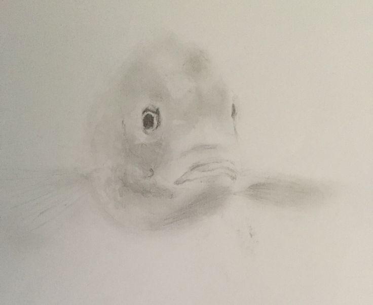 Pencil drawing. Part of A2 sheet.