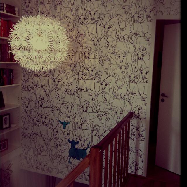 "Marimekko wallpaper 14106 ....says: ""moo..""!"