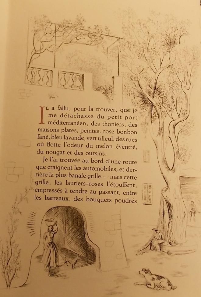 """Page illustrée de Colette, """"La Treille muscate,"""" Paris, Marcel Lubineau, 1955…"""