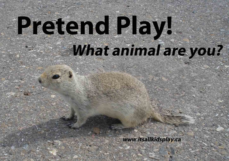 Pretend Play! A vital way for kids to figure out the world around them via play. So? What animal are you today?    #play #animals #pretend #kidsPretend Play