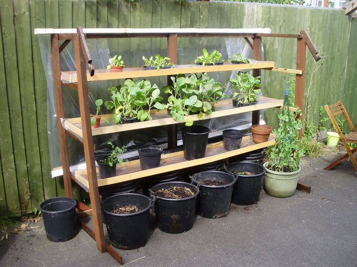Picture of Vertical garden made from scrap materials