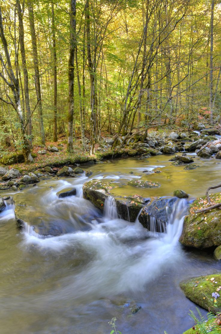 Middle Prong River, Great Smoky Mountains National Park