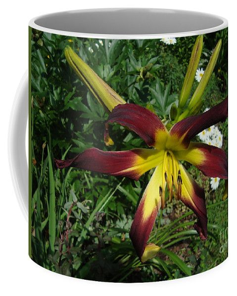 Flower Coffee Mug featuring the photograph Spider Daylily Burgundy by Lyssjart Sj