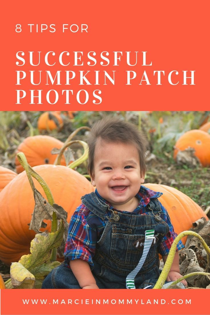 Have a new baby and want those first pumpkin patch photos to be memorable? Click to read more or pin to save for later. www.marcieinmommyland.com #pumpkinpatch #phototips #babyphotos