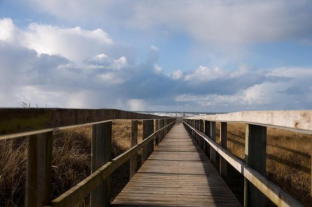 Walking the Plank Ocean Shores Washington, via Flickr.