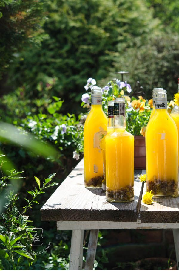 just add some raisins.. add some yeasts..and here you go! Dandelion wine is ready! Oh, so sunny!