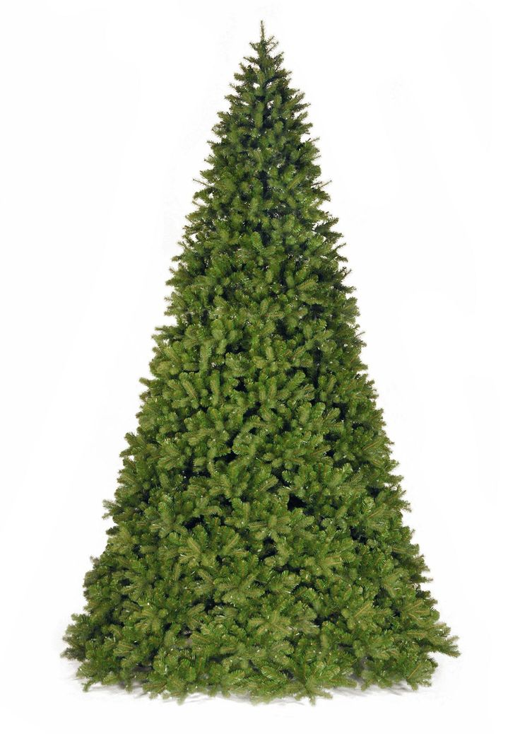 12ft Bayberry Spruce Feel Real Artificial Christmas Tree