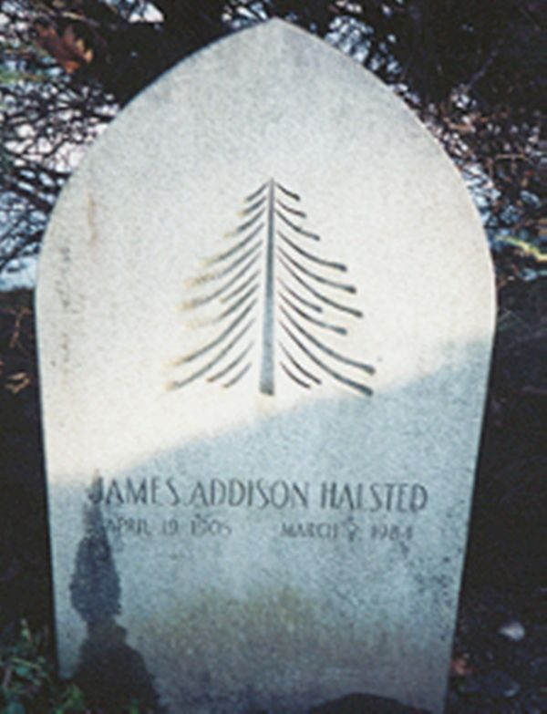 Mrs~~Anna Roosevelt Halsted  Her Husband Grave  Dr James Addison Halsted ♡❀♡RIP♡❀♡  http://en.wikipedia.org/wiki/Anna_Roosevelt_Halsted   http://www.findagrave.com/cgi-bin/fg.cgi?page=gr&GRid=6091884     http://www.stjameshistoricgraveyardtours.com/Dr James Addison Halsted   Birth:  Apr 19 1905  Death:  Mar 2 1984 Cemetery: Saint James Episcopal Churchyard, New   York, USA